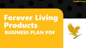 FLP Business Plan PDF