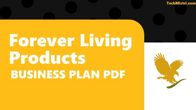 FLP Business Plan PDF