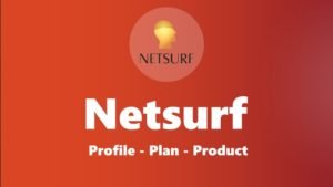 netsurf review